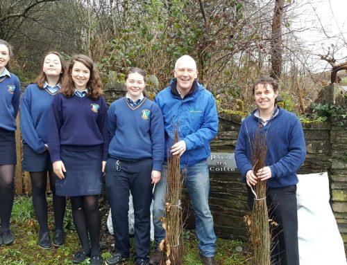Tree Week 2017 – Mount Saint Michael's, Rosscarbery, Co. Cork