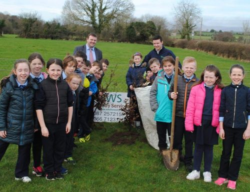Tree Week 2017 – Faha NS, Co. Kerry