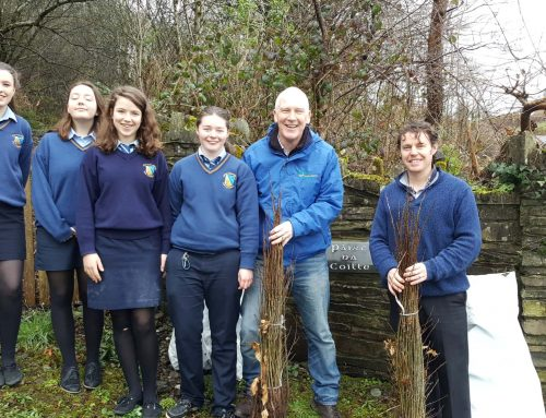 Tree Week 2017 – Mount Saint Michael's, Rosscarbery, Co. Cork